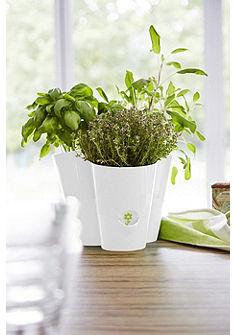emsa Květináč na bylinky »FRESH HERBS«