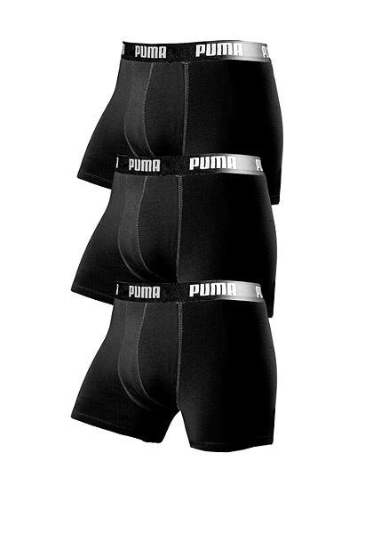 Boxeralsó, Puma (3 db)